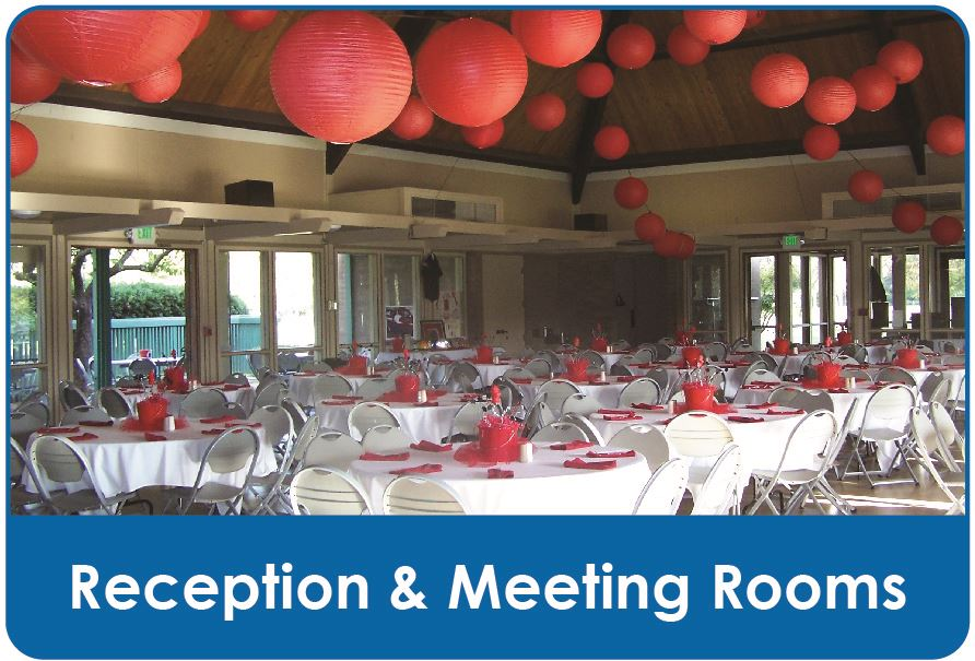 Reception and Meeting Rooms