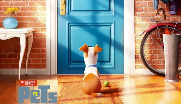 Secret Life Of Pets Image