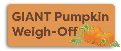 Giant Pumpkin Festival Weigh Off Button