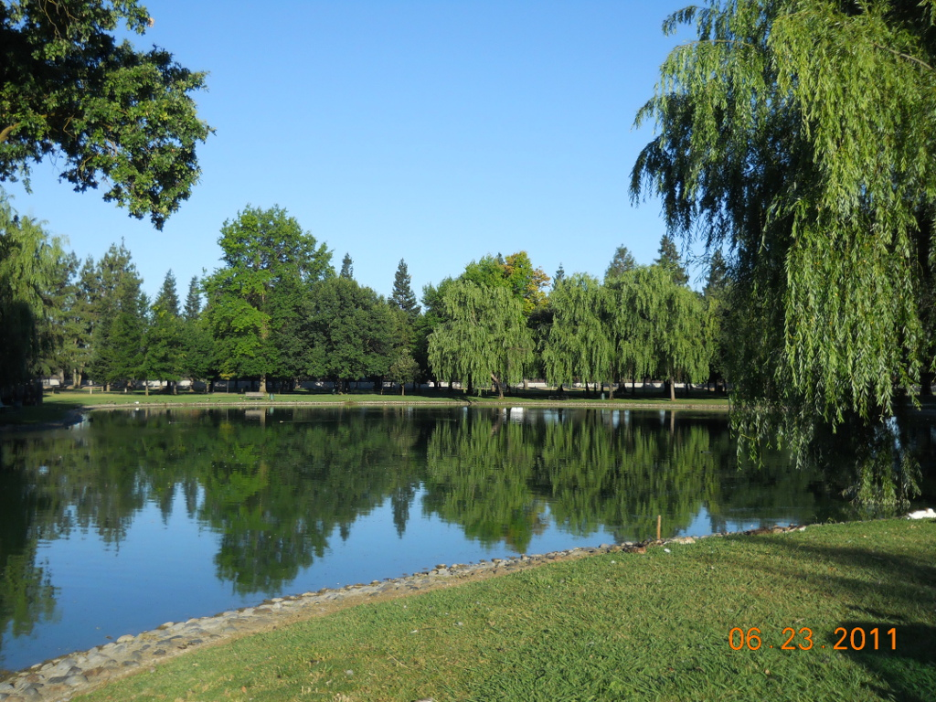 Elk Grove Park Lake with still water and full trees around banks