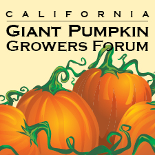 pumpkin growers forum.jpg